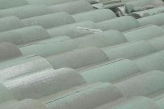 northwest florida roof damage insurance