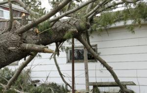 Tornado Damage Claim